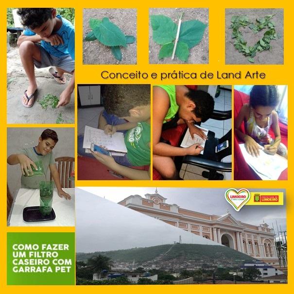 Abordagem prática de atividades educativas exitosas durante o isolamento social em Limoeiro